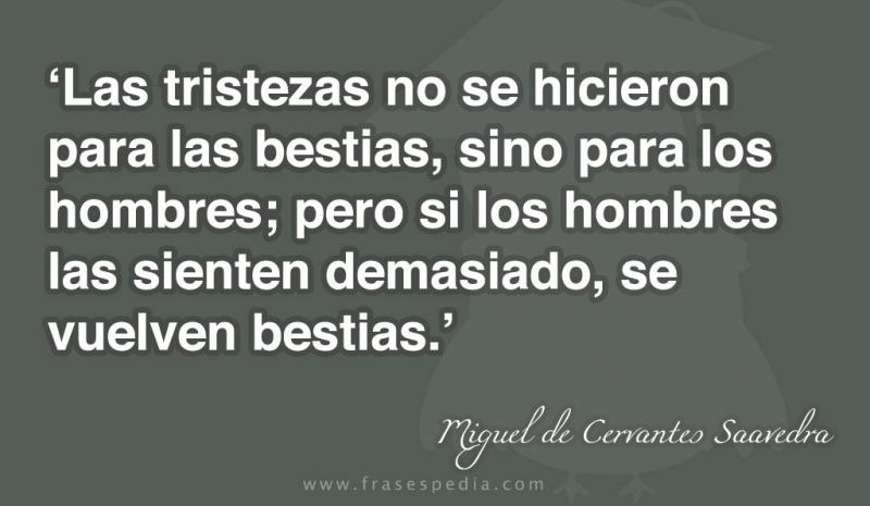 frases-de-tristeza-de-Miguel-de-Cervantes-Saavedra-01.jpg
