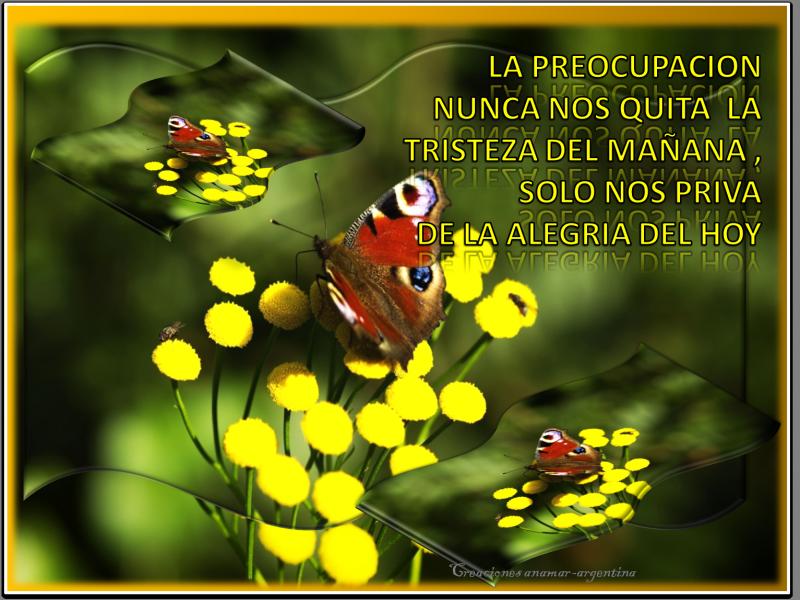 imagenes-con-frases-motivadoras-3-creaciones-anamar-argentina.png