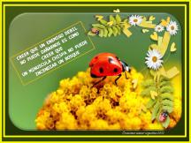 imagenes-con-frases-motivadoras-5-creaciones-anamar-argentina.png