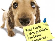 feliz_finde.png