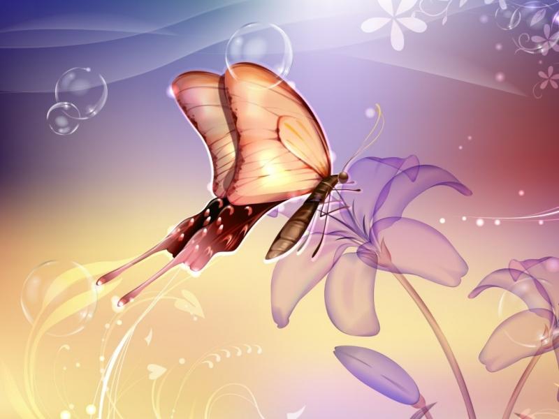 mariposa.jpeg