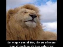 imagenes_bonitas_con_frases_para_facebook_ser_el_rey