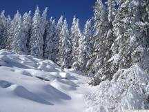 Winter-landscape 10
